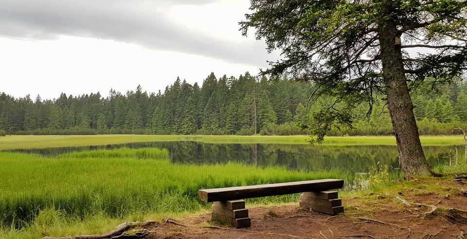 bydlení u jezera
