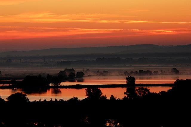 západ slunce, moře, stromy