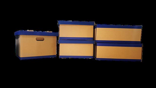 kartonový box