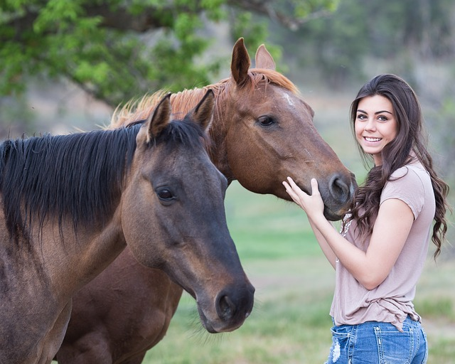 děvče u koní.jpg